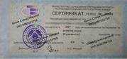 Опытный репетитор по русскому языку (магистр филологических наук)
